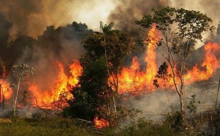Αμαζόνιος: 700 νέες πυρκαγιές μέσα σε 24 ώρες