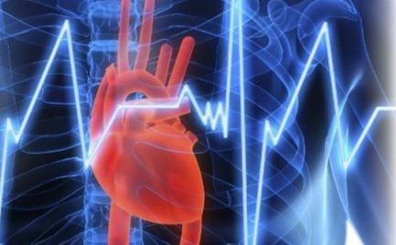 Γιατί το ανθρώπινο είδος είναι επιρρεπές σε καρδιακές προσβολές