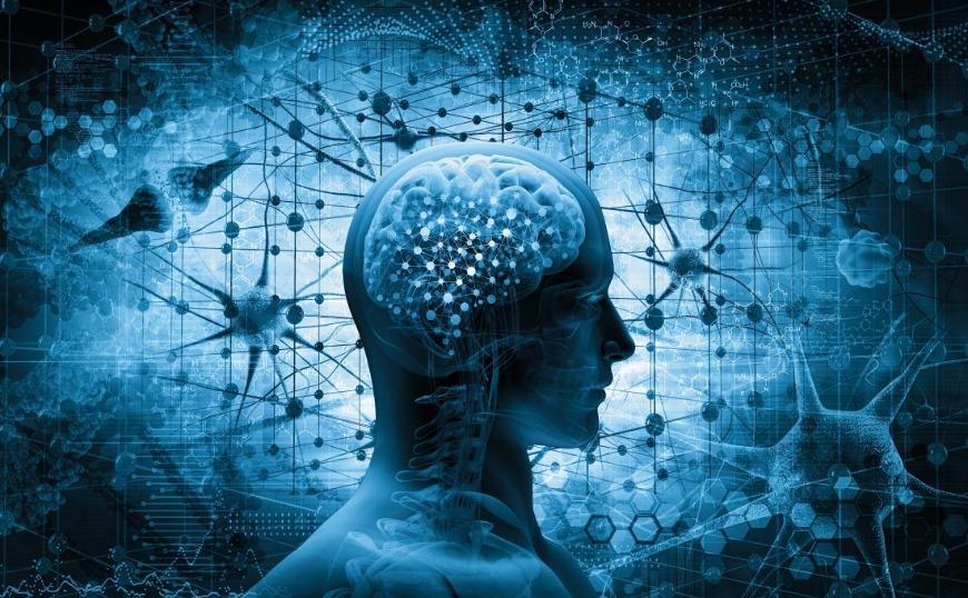Οι ανθρώπινοι εγκέφαλοι θα συγχωνευθούν κάποτε στο «νέφος»