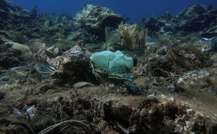 Aegean Rebreath: Ο «κόλπος με τα πλαστικά κοράλλια» του Αιγαίου (video)