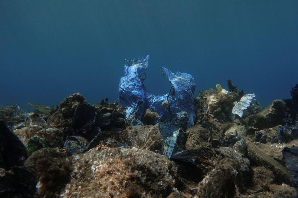 Ο «κόλπος με τα πλαστικά κοράλλια» του Αιγαίου