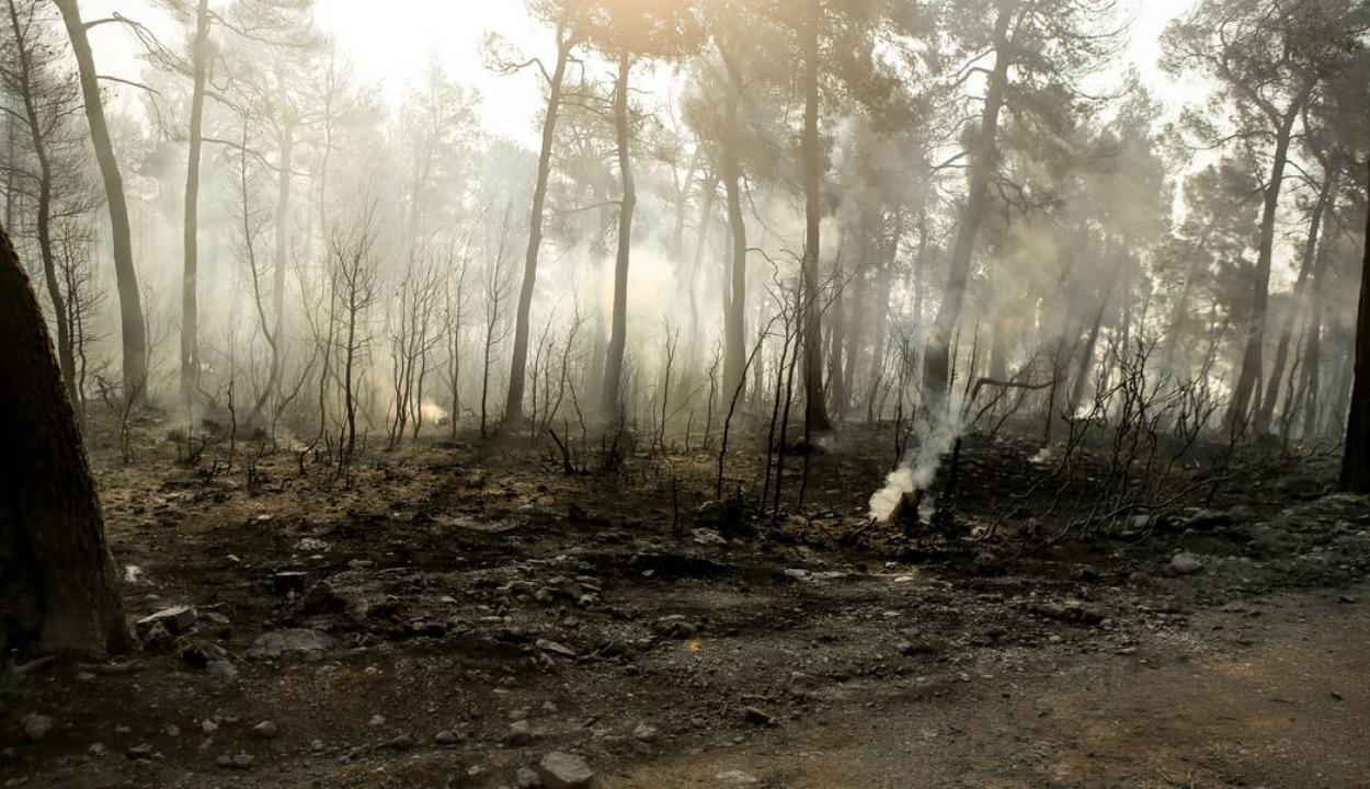Στις φλόγες για 3η μέρα η Εύβοια