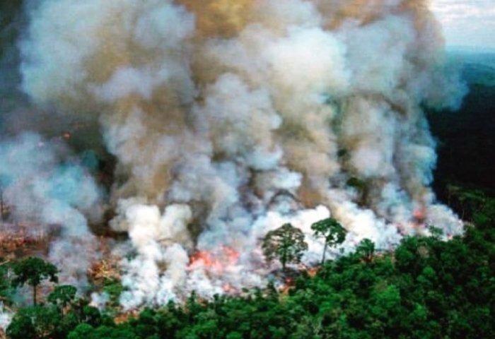 0 Καίγεται ο Αμαζόνιος