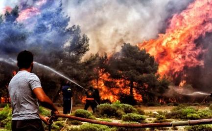 WWF: Οι «γιγαντιαίες πυρκαγιές» απειλούν την Ευρώπη